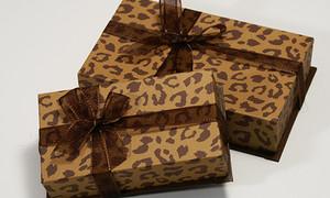 Leopardbox1